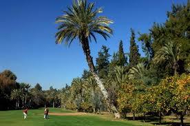 Golf pic 3